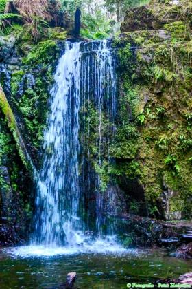 Marriner's Falls